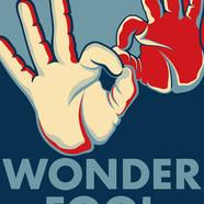"""9.11.16 - WonderFool"""