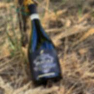 Bravura Vinograd 1.jpg