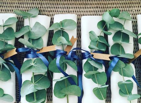 Fragrant Fresh Eucalyptus
