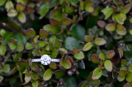 Molly and Riley Proposal_Dec 01 2018_8.j