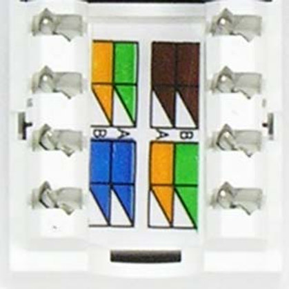 101703WT Cat.6 RJ45 110 Type Keystone Jack White