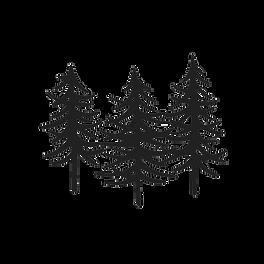 Logo_White%20Trees_edited.png