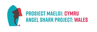 18079_AngelSharkProject_Logo_We+En.jpg