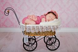 Новородена кукличка на 23 дни