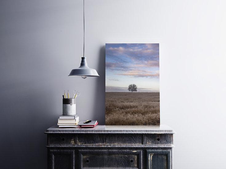 Lone Tree & Clouds