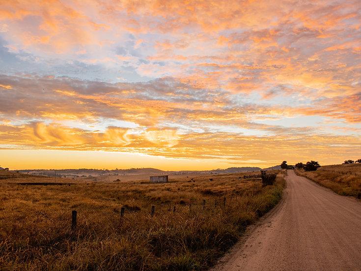 Dirt Road at Dawn