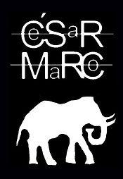 logo_elefante_6_edited.jpg