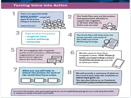 Turning Your Voice into Action - Having a Say on the New Youth Plan