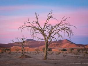 Sossusvlei Dawn, Namibia