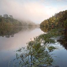 La rivière Pieman - Tasmanie