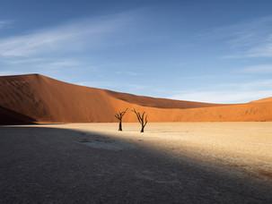 Deadvlei Duo - Namibia