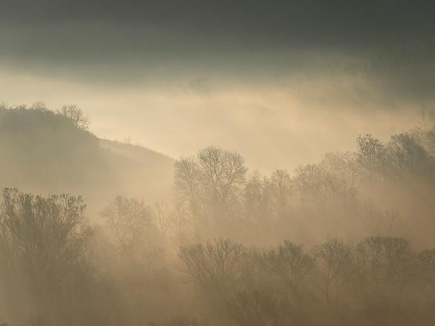 Morning Light, Tuscany - Italy