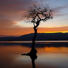 Crépuscule sur le Loch Lomond - Ecosse