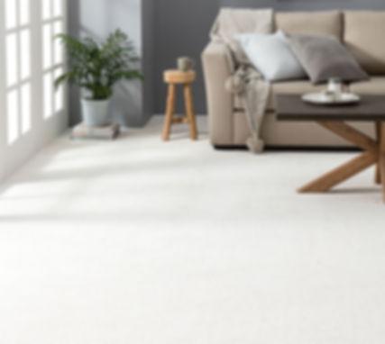 Dreamweaver carpet installed in the living room