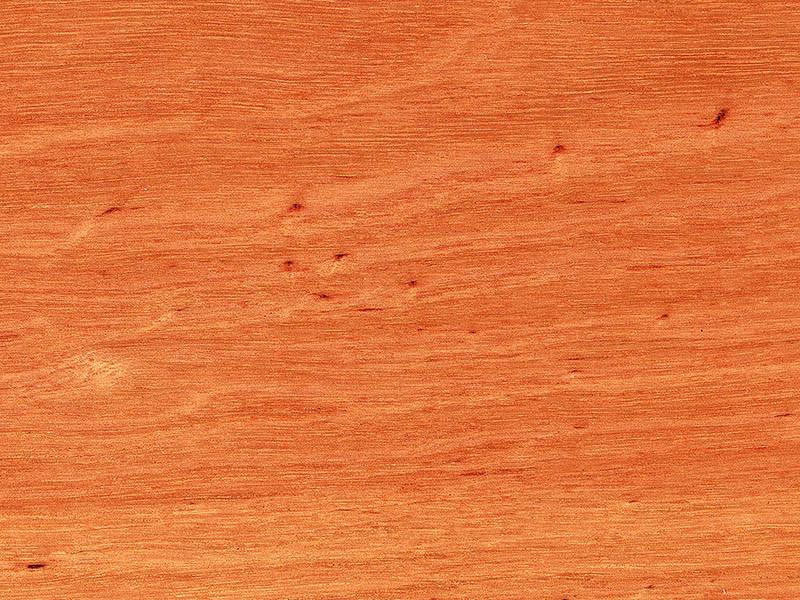 Timber Max TG Matte Timber Flooring Sydney Blue Gum
