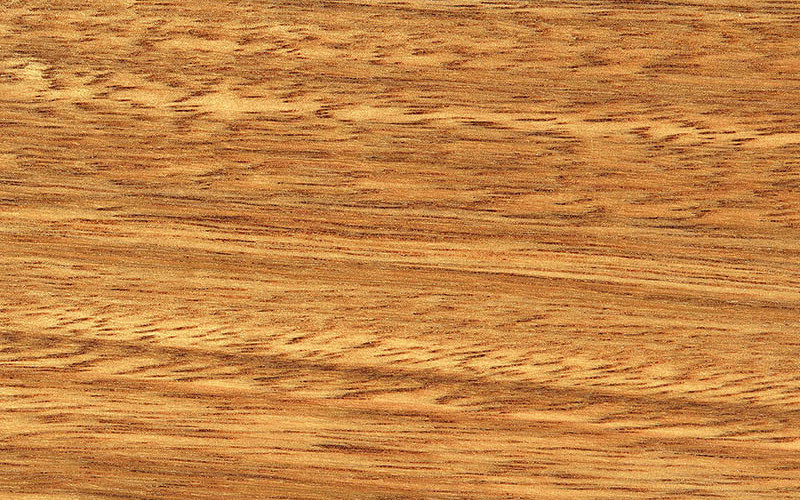 Timber Max TG Matte Timber Flooring Spotted Gum