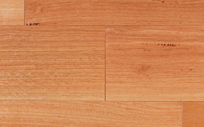 Timber Max TG Timber Flooring Sydney Blue Gum