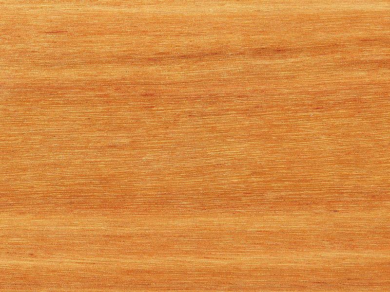 Timber Max TG Matte Timber Flooring Blackbutt