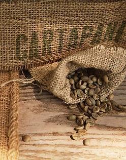 high_quality_beans.jpg