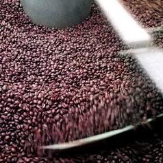 espresso beans freshly roasted