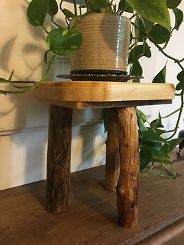 Dritwood Based Plant Stand