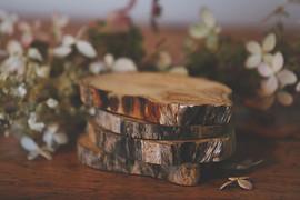 Driftwood Coasters
