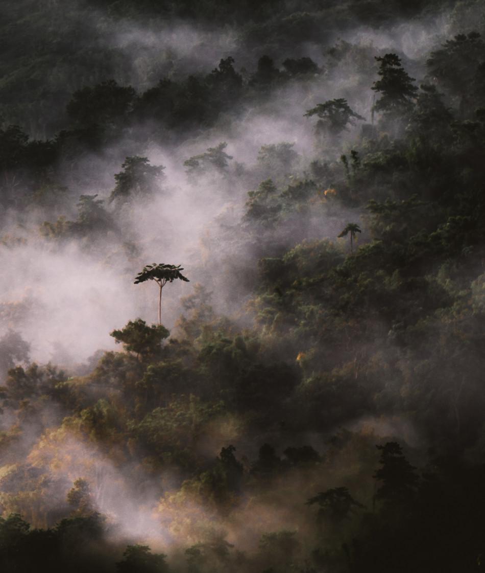 Mt. Maynuba edited-5278.jpg