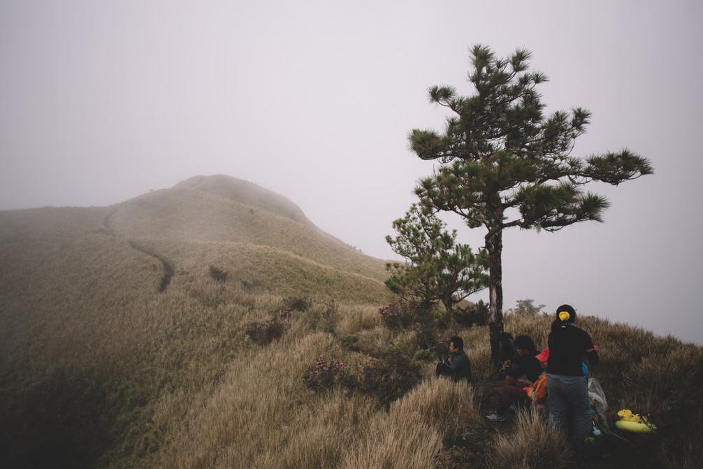 Mt. Pulag -245.jpg