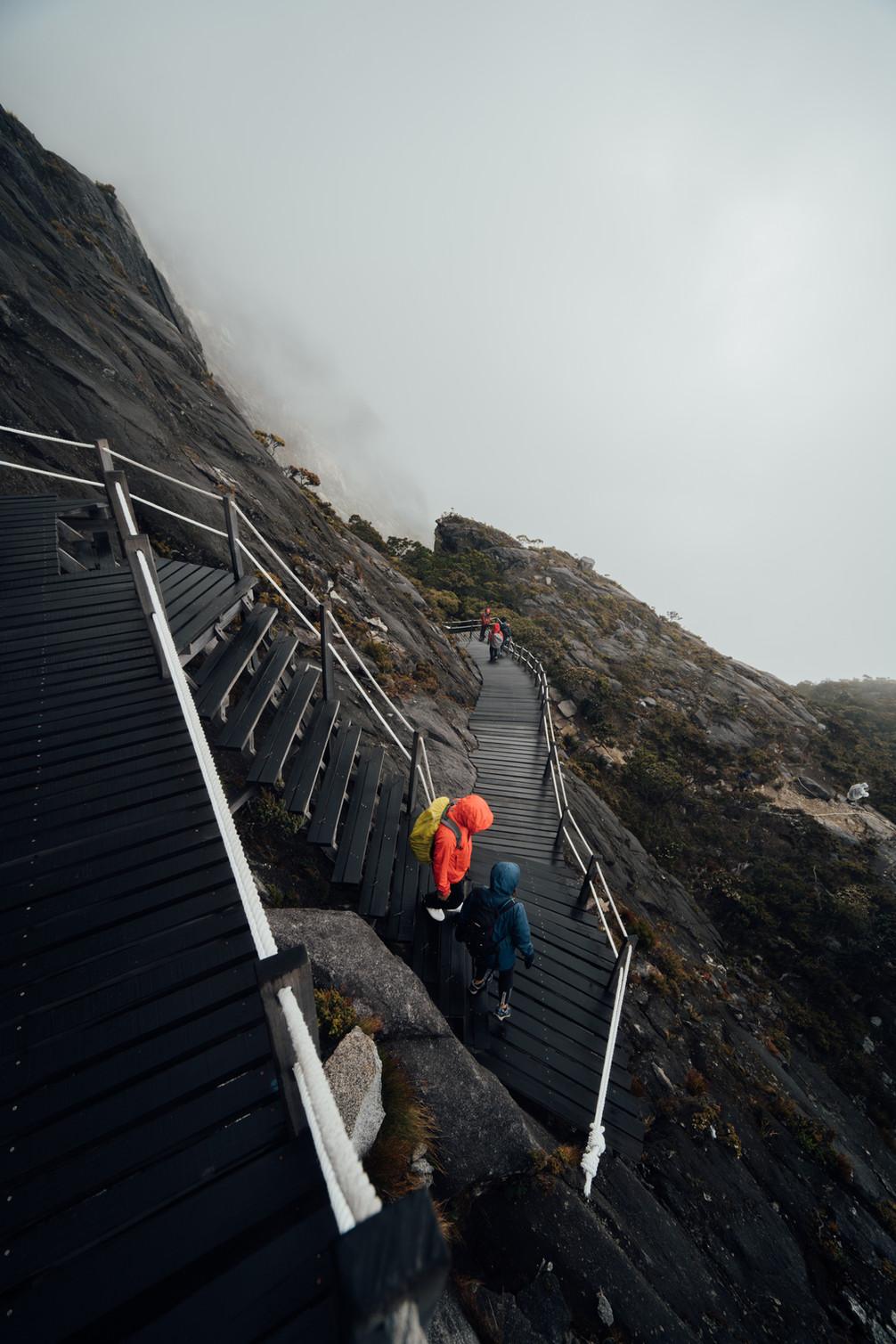 Mt. Kinabalu -00538.jpg