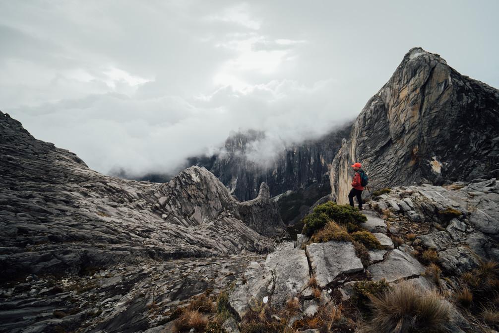 Mt. Kinabalu -00521.jpg