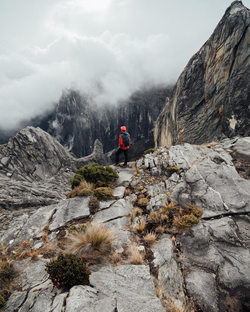 Mt. Kinabalu -00518.jpg