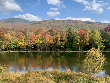 Best Scenic Drives & Rides for Leaf-Peeping