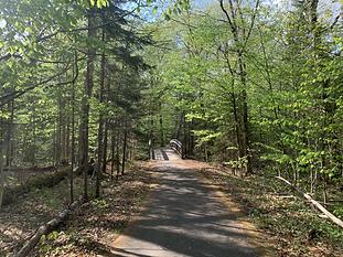 Franconia Notch Bike Path