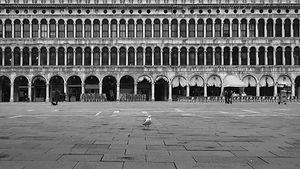 Covid in Italy.jpg