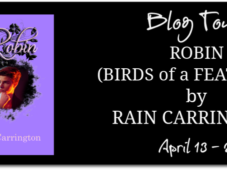 Robin by Rain Carrington - Blog Tour, Excerpt, Interview, Giveaway