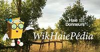 Promo-Facebook-Shared Image (18) WikHaie