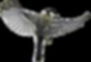 animal-3450761_1280 (1).png