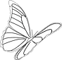 butterfly-312188_1280.png