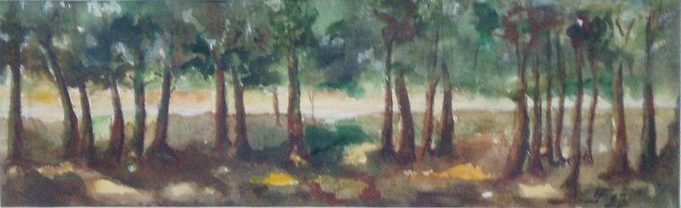 Bos bij Obbicht 1997
