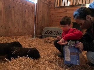 jaxson and linh feeding piglets.jpg