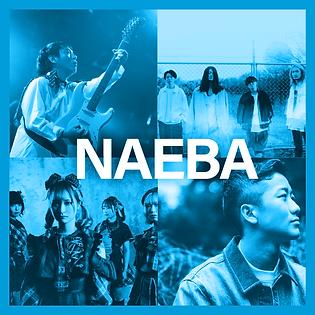 NAEBA 2.png