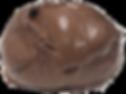chocolatesorbet.PNG