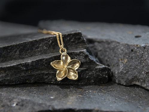 תליון פרח הפיטנה, פלומריה ריחנית