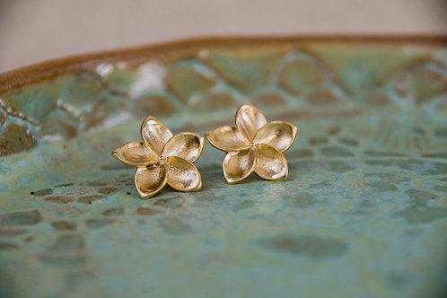 עגילים צמודים פרח הפיטנה / פלומריה