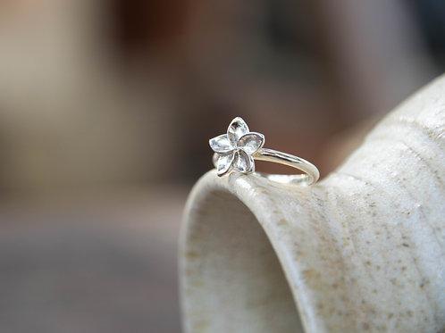 טבעת פרח פיטנה