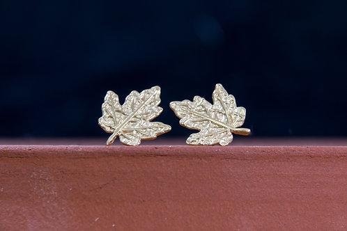 עגילים צמודים עלים של עץ מייפל