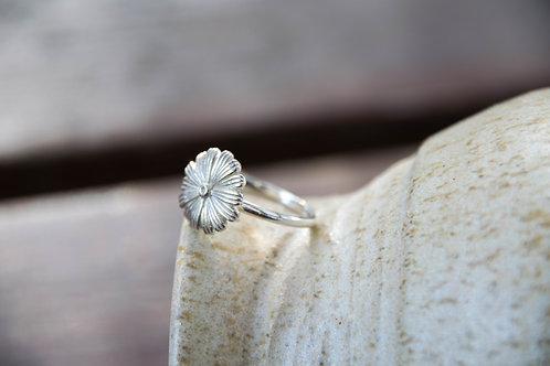 טבעת פרח דייזי