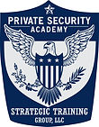 Strategic_Training_Group__LLC_edited.jpg