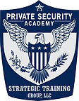 Strategic_Training_Group__LLC_edited.jpg