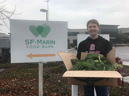 Helping Stop Hunger in Marin